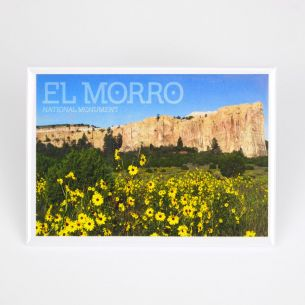 El Morro National Monument Magnet - Daisies