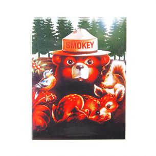 Smokey Bear & Friends Magnet